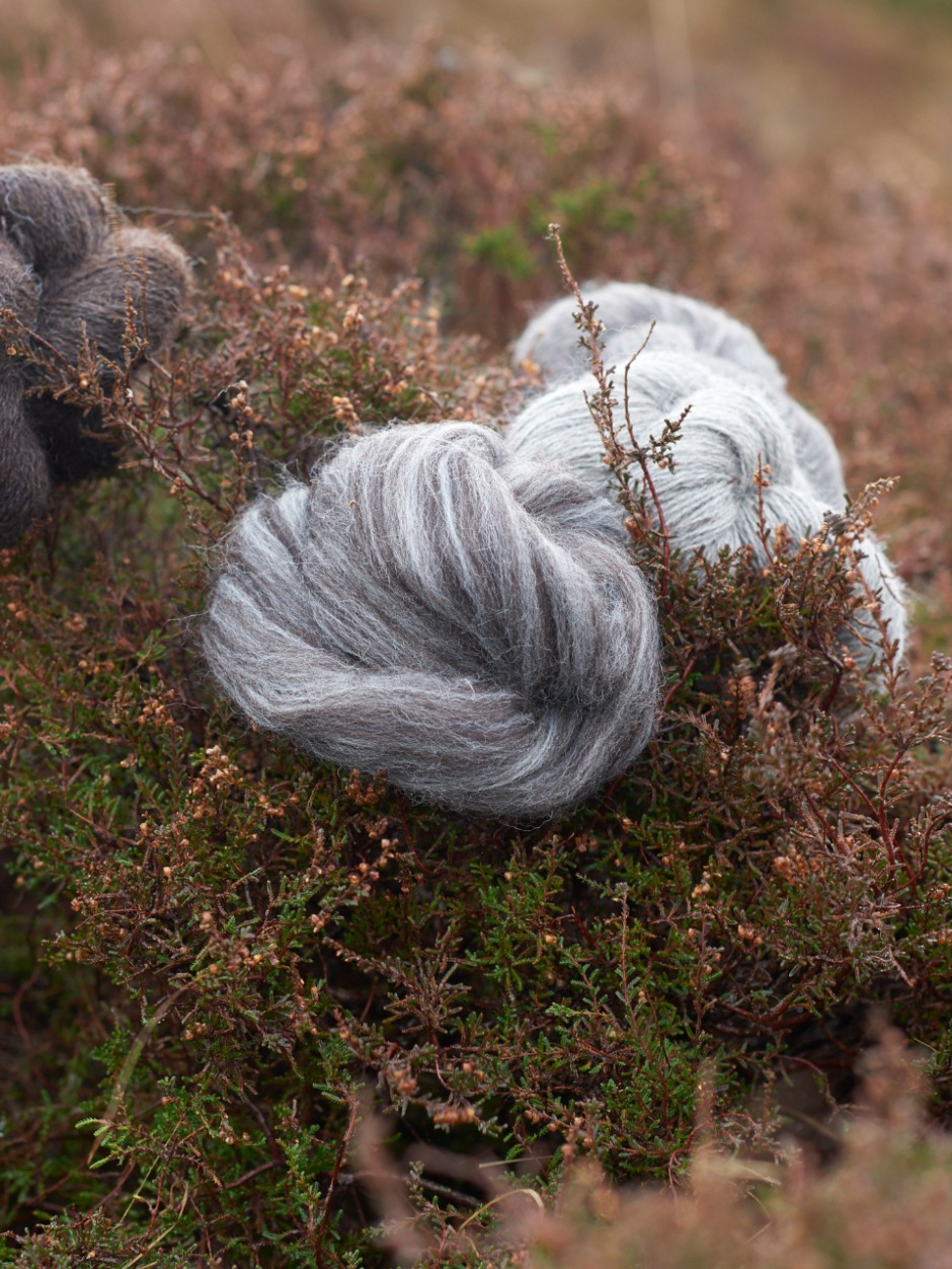 Zwartbles / Exmoor Blueface Top